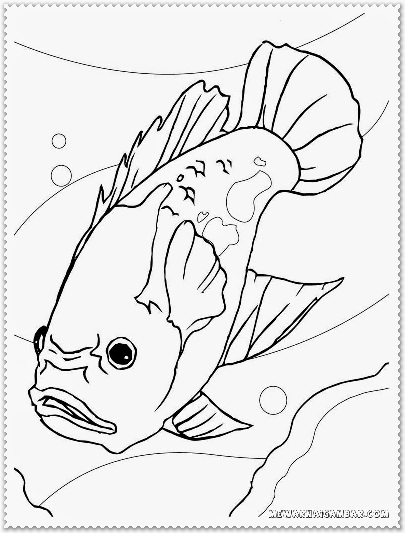 Angry Fish Coloring Pages