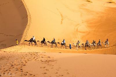 Morocco Camel Trek Desert Tours