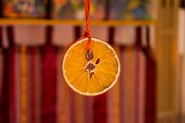 Portakalın Bilgeliği