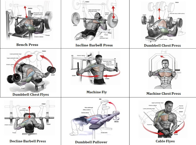 Best Workout Chest Routine - Exercise Your Chest Once a Week