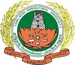 Tamilnadu Agricultural University Vacancy 2017 for– Staff Nurse, Pharmacist