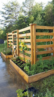 Raised Bed, vegetable garden, protected flower garden