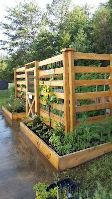 Raised Bed, vegetable garden, protected flower garden