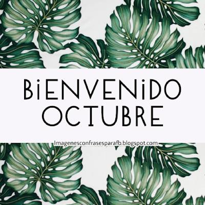 Bienvenido Mes de Octubre