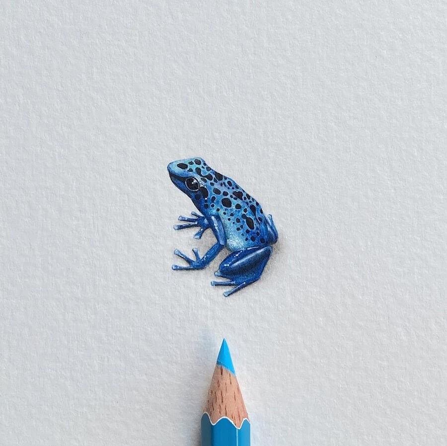 04-Blue-poison-arrow-frog-Lorraine-Loots-Tiny-Art-www-designstack-co