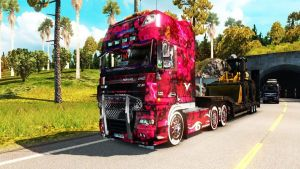 DAF DRD Paint Job