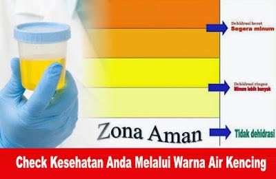 Check Kesehatan Anda Melalui Warna Air Kencing