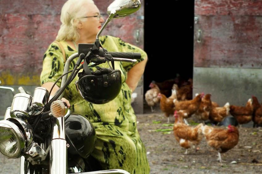 Im Hühnerstall Motorrad gefahren: Oma wegen Tierquälerei festgenommen