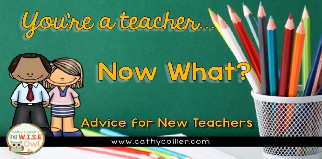 You've got the degree and the job. You're officially a teacher...Now What? Here is some advice for new teachers.