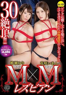 CESD-372 M × M Lesbian Hanasaki Comfort Yuri Momose