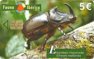 Tarjeta telefónica Escarabajo rinoceronte (Oryctes nasicornis)