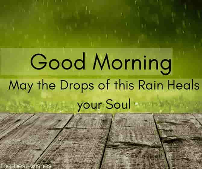 good morning rainy images