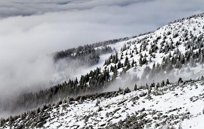 időjárás, Székelyföld, fagy, tél, Bucsin-tető, havas erdő