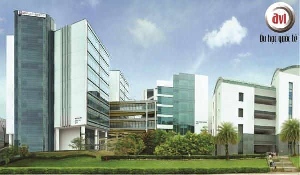 Du học hè tại Học viện Quản lý Singapore (SIM)