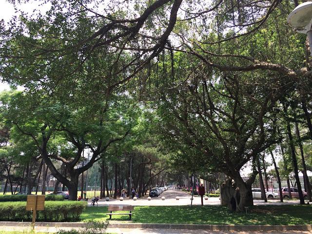 中央大學校園