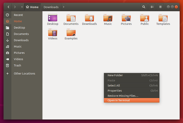 Ubuntu 18.04 screenshots nautilus files