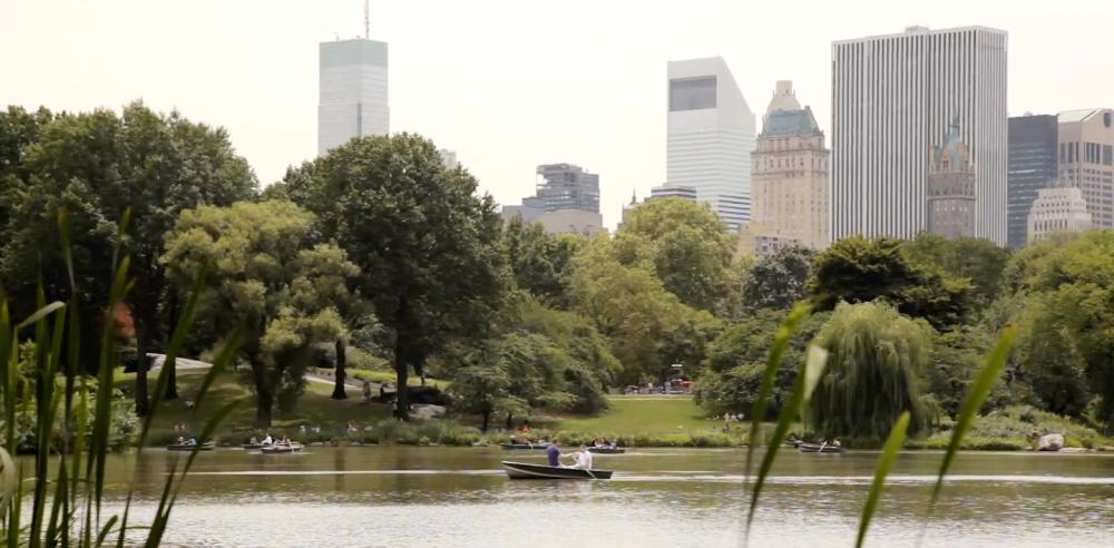 Nova York | The Biggest City of Nova York and USA