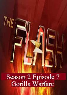 Download Flash Season 2 Episode 7 (Gorilla Warfare).
