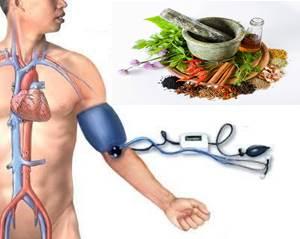 Cara Membuat Obat Hipertensi Alami