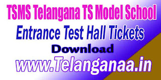 TSMS Telangana TS Model School 10th Class SSC Entrance Test Hall Tickets Download