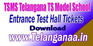TSMS Telangana TS Model School 10th Class SSC Entrance Test Hall Tickets Download