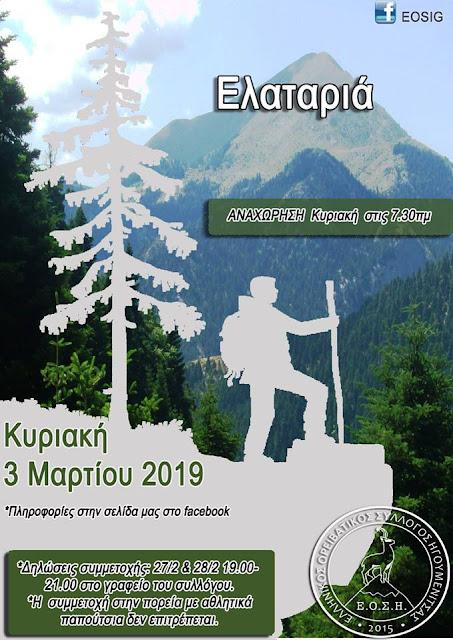 Ο Ελληνικός Ορειβατικός Σύλλογος Ηγουμενίτσας στην Ελαταριά