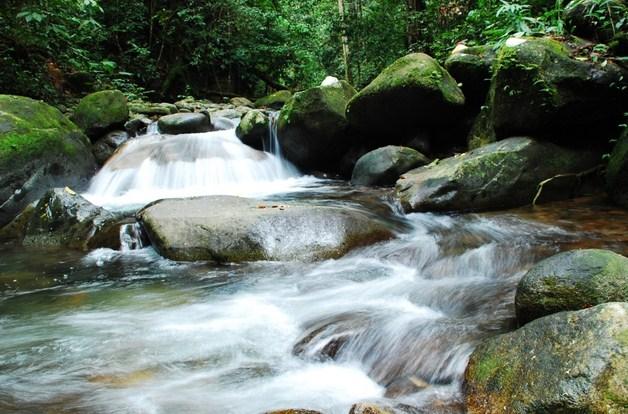 Pengertian dan Jenis Sungai