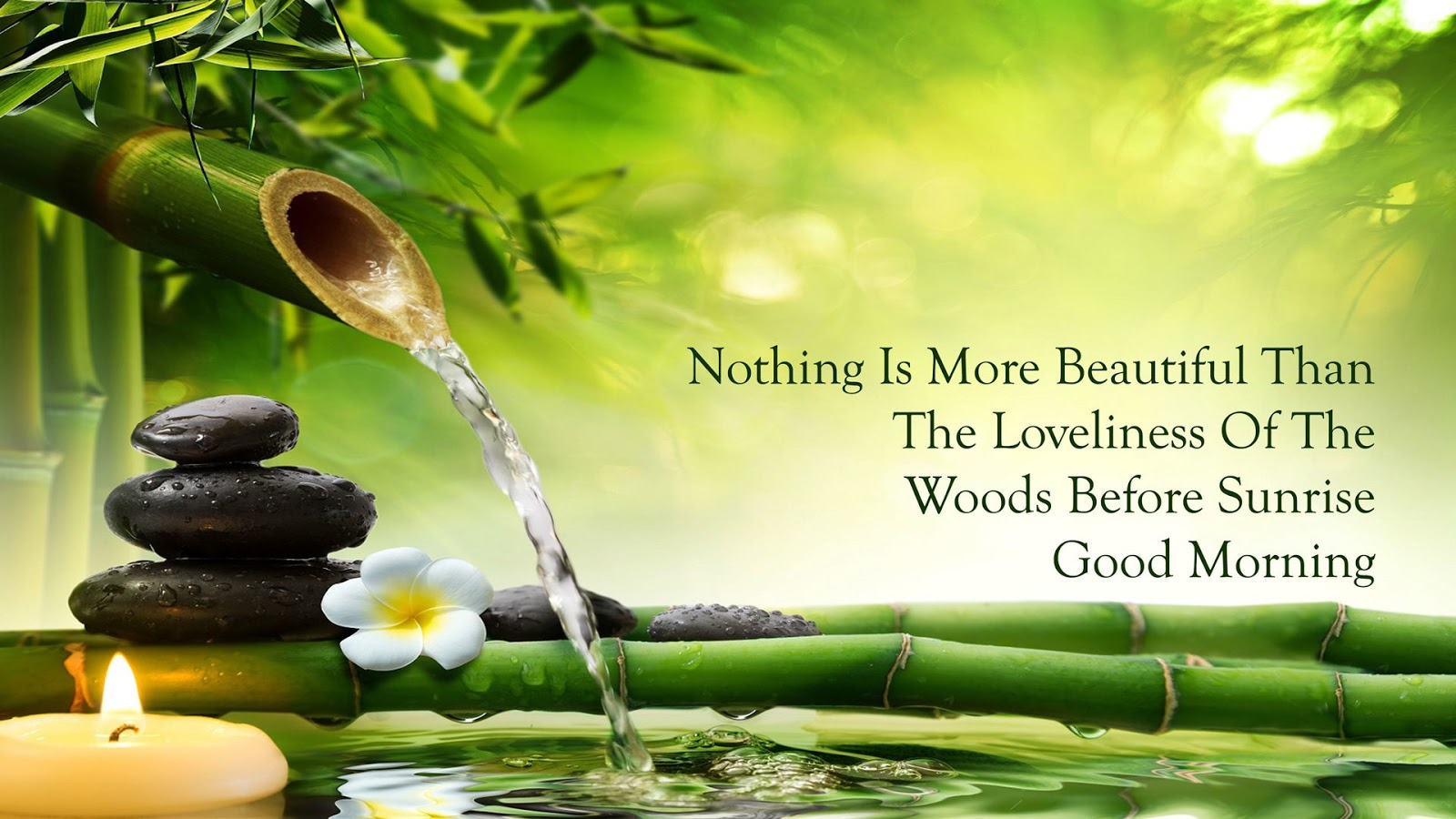 High Quality Nothing Is More Beautiful Than The Loveliness Of The Woods Before Sunrise Good  Morning.