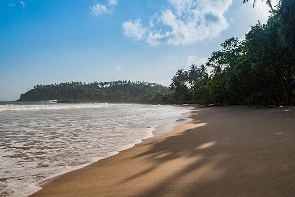 Wakacje Sri Lanka