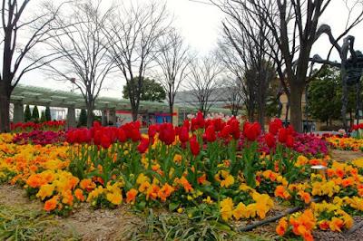 Flowers at Mori Garden in Roppongi Hills Tokyo