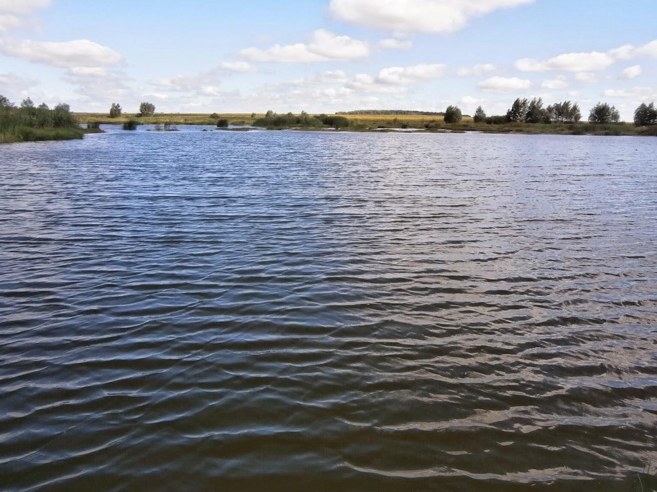 Платные рыбалки в брестской области