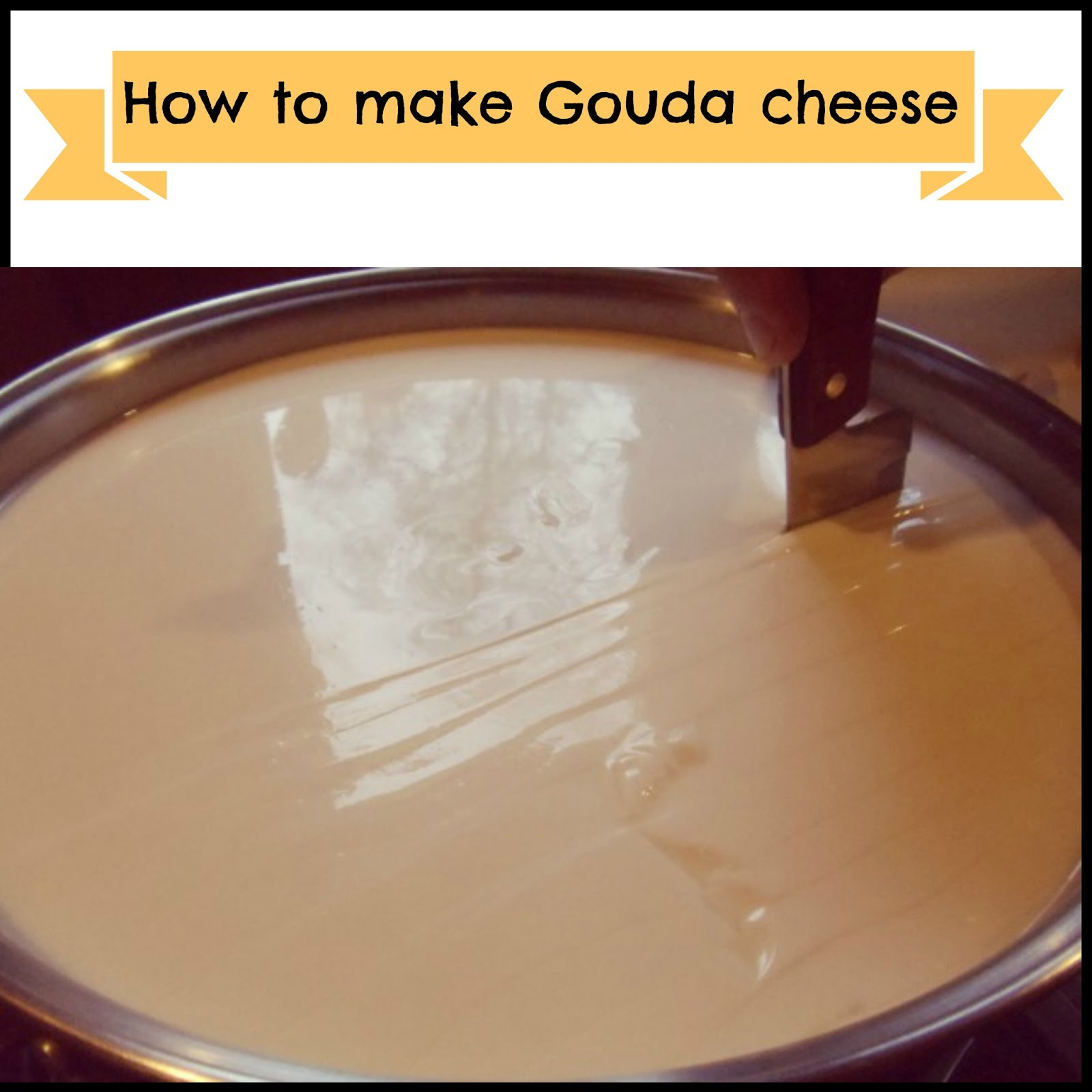 How to make Gouda cheese