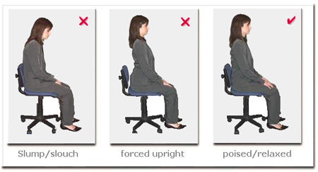 Posture Chair Demo Covers Prevent Cat Scratching Computer Seating Patient Information Schedule A