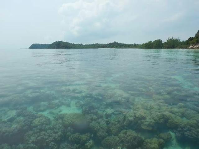 Pulau Abang snorkeling tour