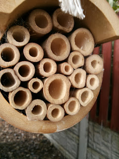 our wooden bee house