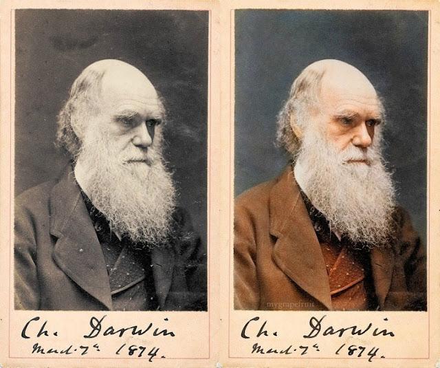 Charles Darwin, 1874