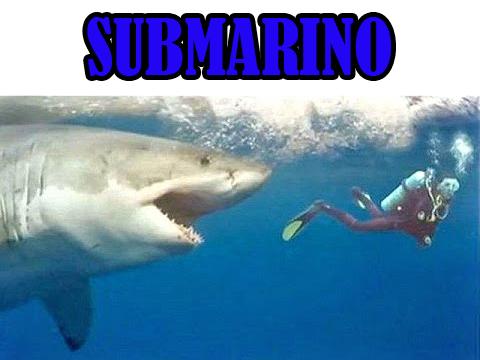 SUBMARINO el tiburón asesino