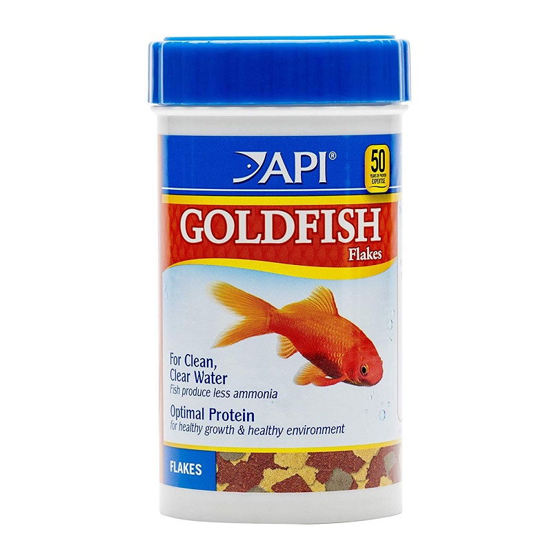 Image What You Don't Know About Betta Fish Food for Goldfish