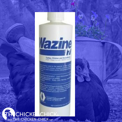 Wazine-17 (Piperazine) is USDA approved for use in laying hens for roundworms. 1 ounce per gallon of water as only source of drinking water for one day. Offer fresh water for 13 days, then repeat one day treatment.