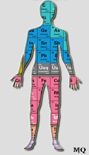A Química do corpo humano