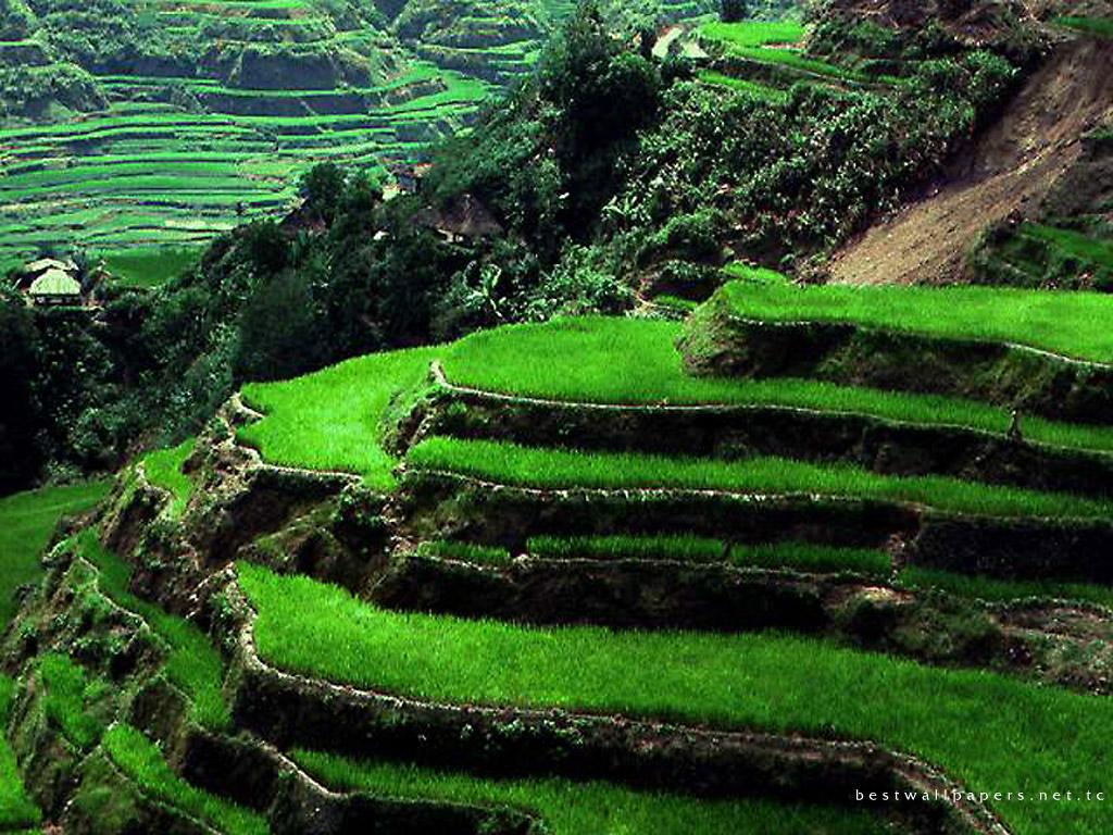 wallpaper pemandangan indah di indonesia - photo #19