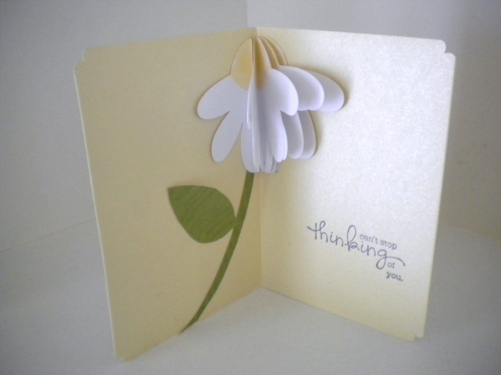 Pop Up Card Book