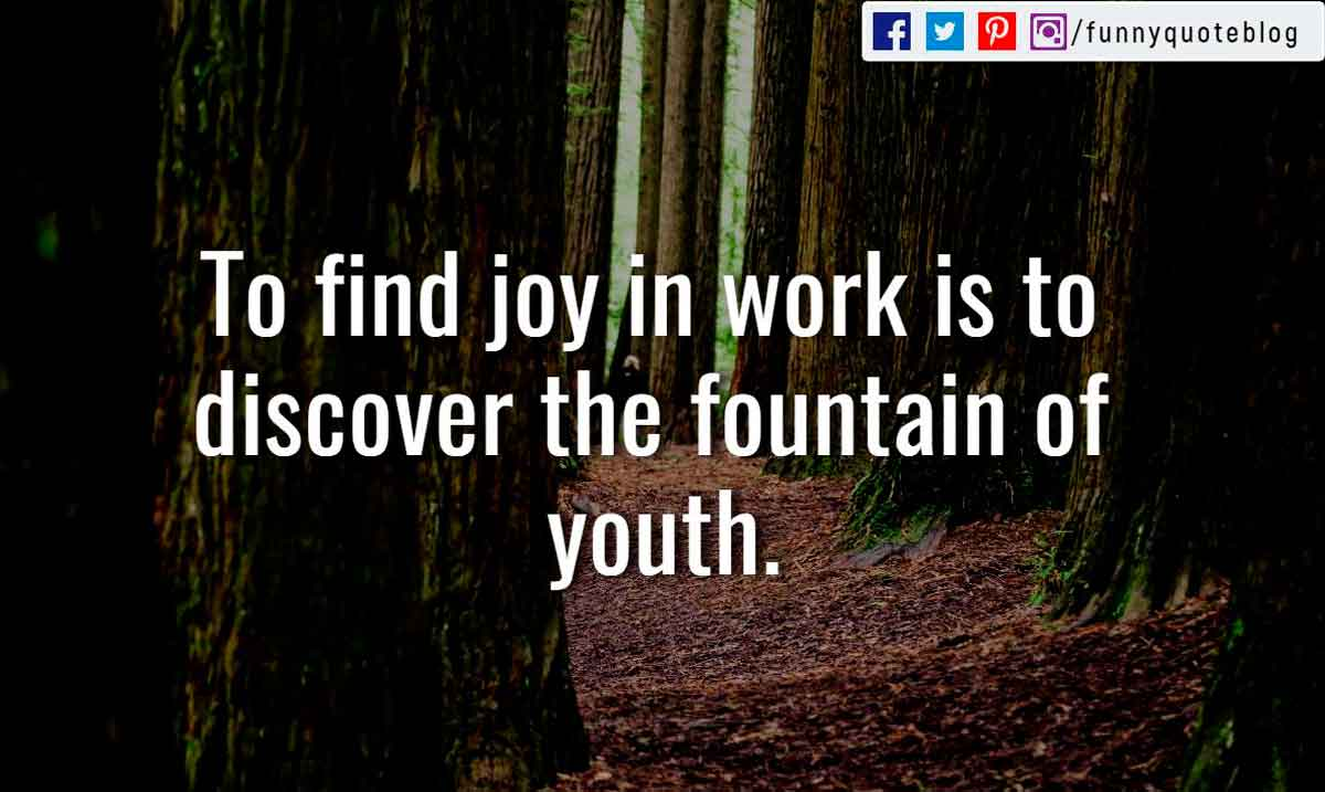 To find joy in work is to discover the fountain of youth.