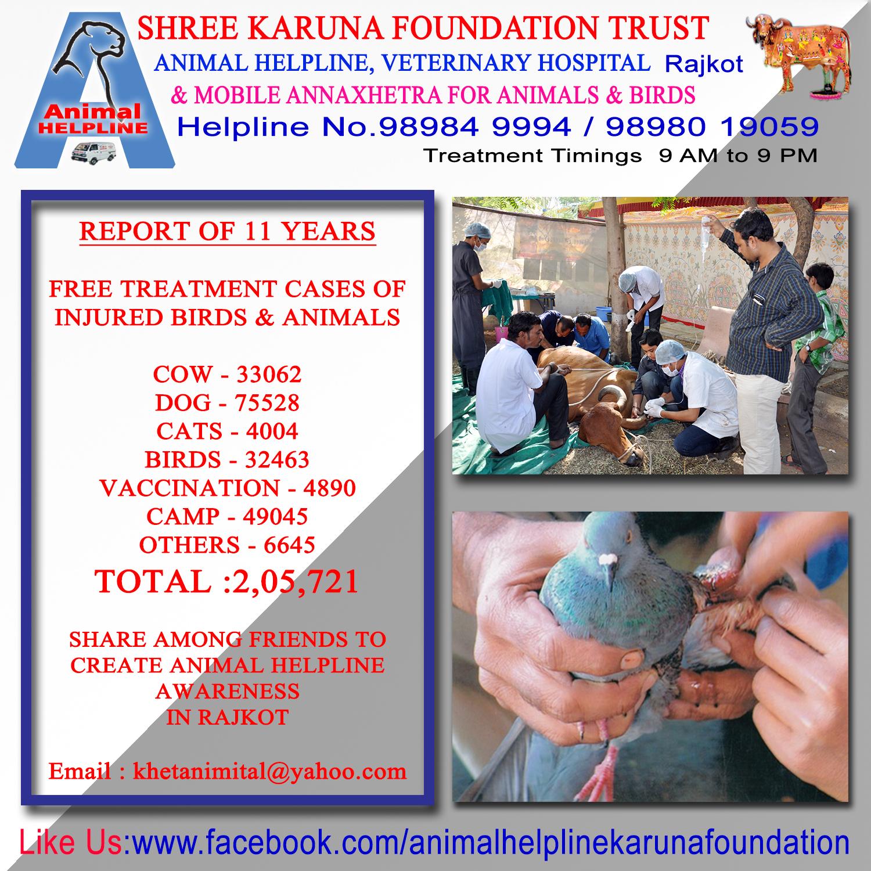Animal Helpline - Rajkot: November 2015