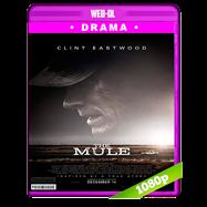 La mula (2018) WEB-DL 1080p Audio Dual Latino-Ingles