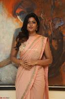 Eesha Rebba in beautiful peach saree at Darshakudu pre release ~  Exclusive Celebrities Galleries 043.JPG