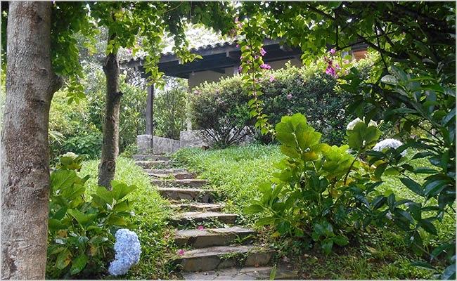 vagabuzz: El Jardin de Celeste
