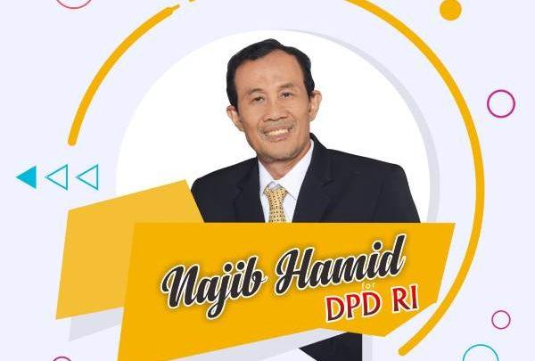 Nadjib Hamid