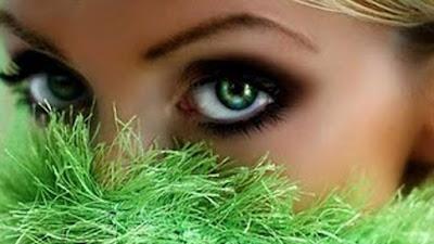 Os Olhos: Janelas para o Mundo