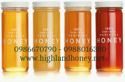 Giá mật ong xuất khẩu 2017 dự báo sẽ như thế nào?